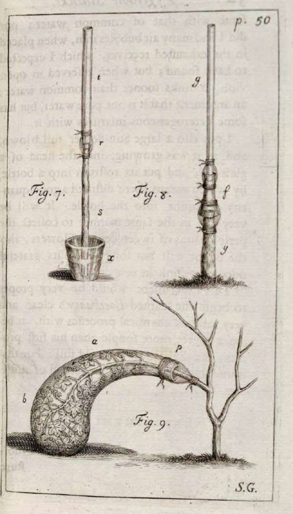 Exploring the Rich History of Plant Science – Biodiversity Heritage ...