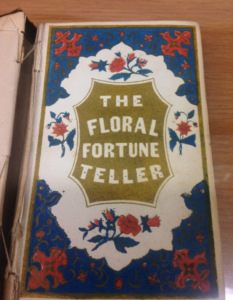 "a book with a blue, white, and red cover that reads ""the floral fortune teller"""