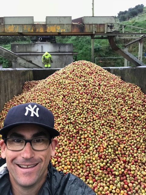 Caucasian male in a baseball cap standing in front of a pile of apples.