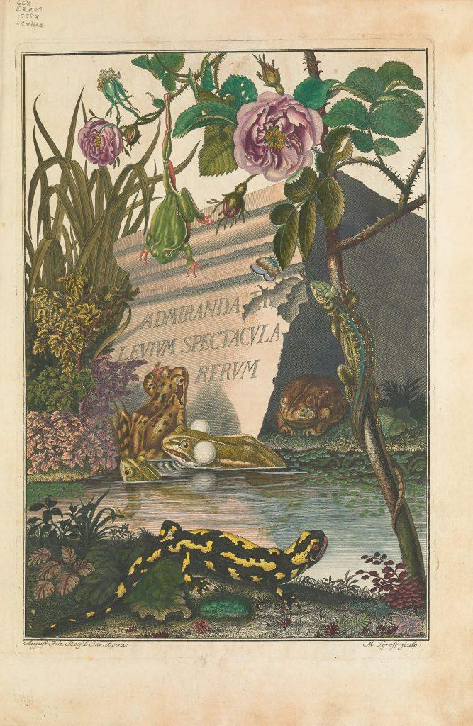 Historia naturalis ranarum nostratium frontispiece