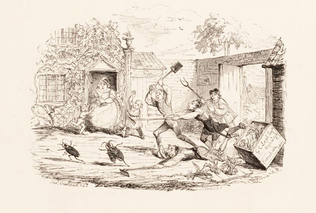 As another example of humor within The Orchidaceae of Mexico and Guatemala, this vignette by George Cruikshank depicts a pair of gigantic cockroaches escaping from a box meant to contain orchid specimens whilst the gardener's family and assistants chase the unwelcome intruders.