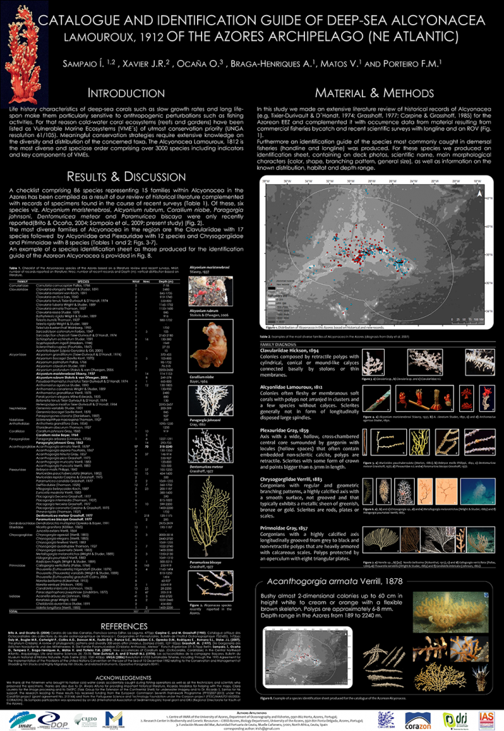 poster on octocoral catalogue