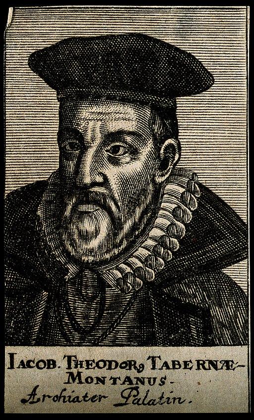 3.Jacobus_Theodorus_Tabernaemontanus._Line_engraving,_1688._Wellcome_V0005711.jpg
