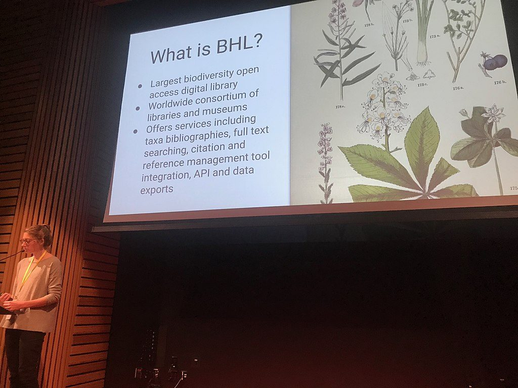 Katie Mika presenting as part of WikiCite and the Biodiversity Heritage Library at WikiCite 2018.