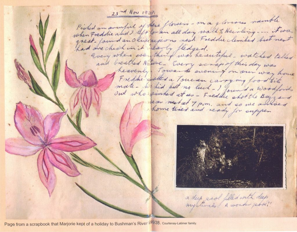 The Coelacanth Vol. 42 (1) Centrepiece