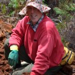 Dr. Robert Mesibov in millipede collecting hat.
