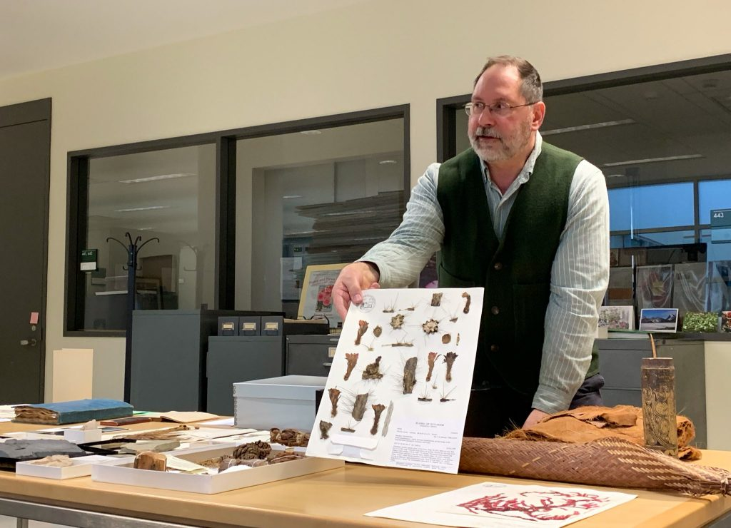 Holding holding a sheet of dried herbarium specimens.