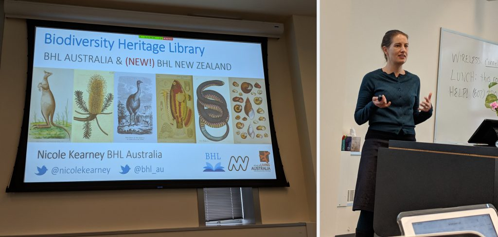 "A woman standing next to a slide that reads ""BHL Australia and the (NEW) BHL New Zealand"""