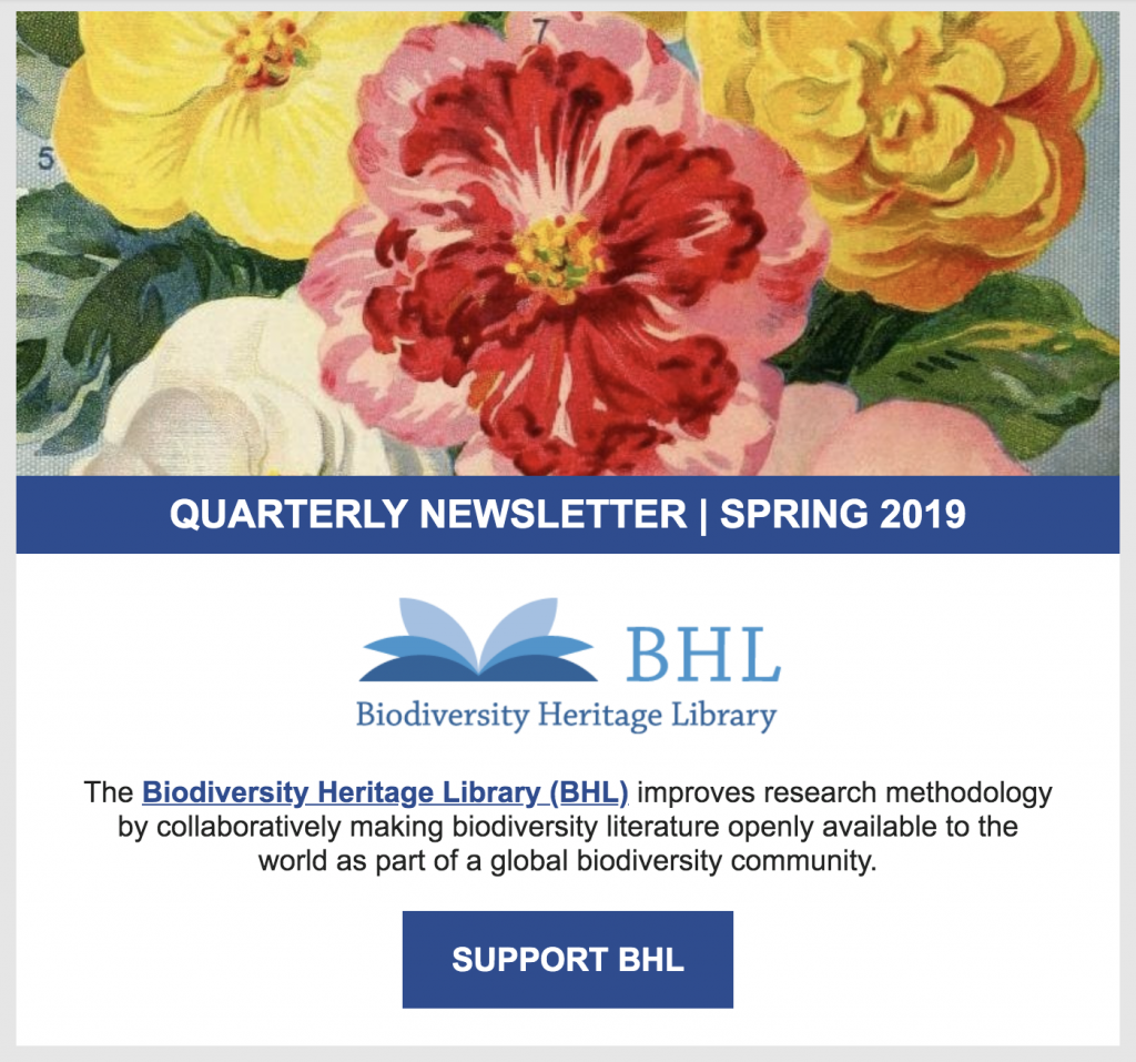 screenshot of the 2019 spring BHL newsletter