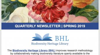 screenshot of the 2019 spring BHL newsletter