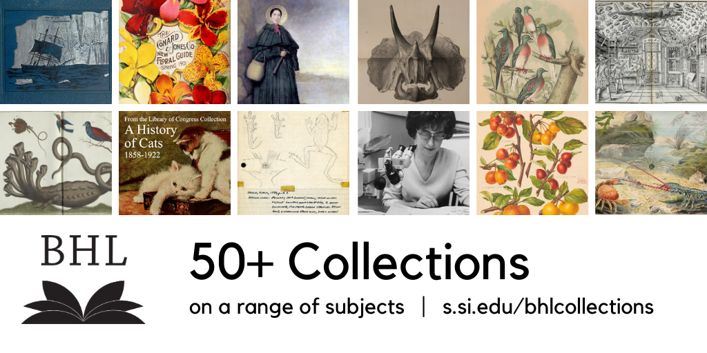 graphic with BHL collections highlighted