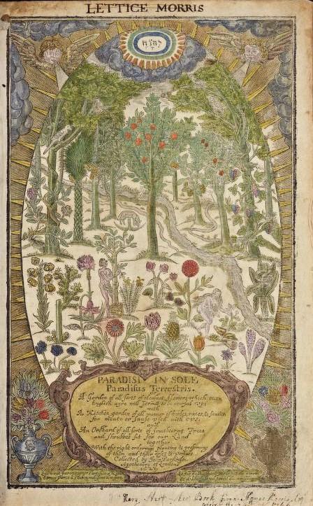 illustrated garden of eden scene