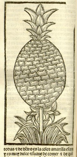 woodcut of a pineapple