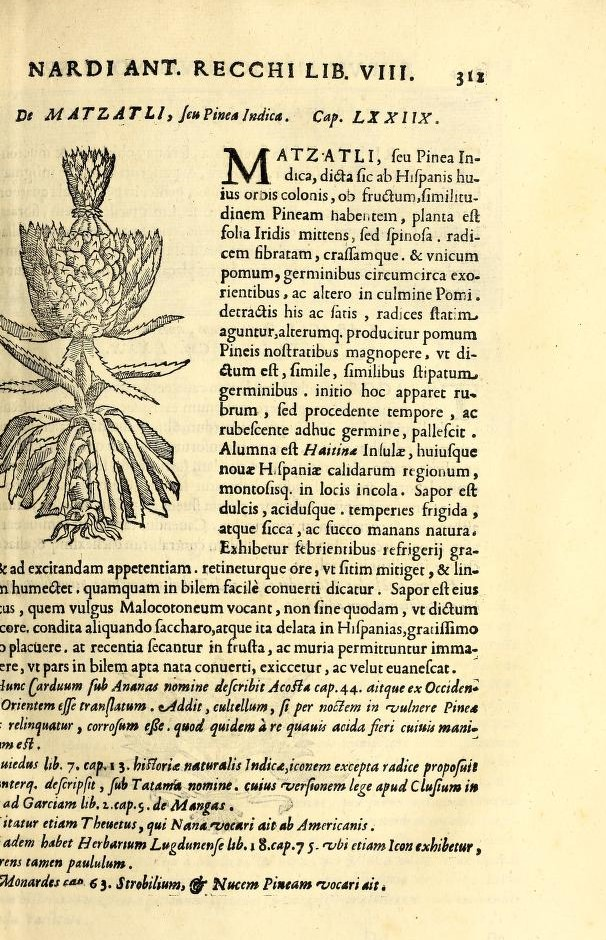 page of a book with text and woodcut of a pineapple