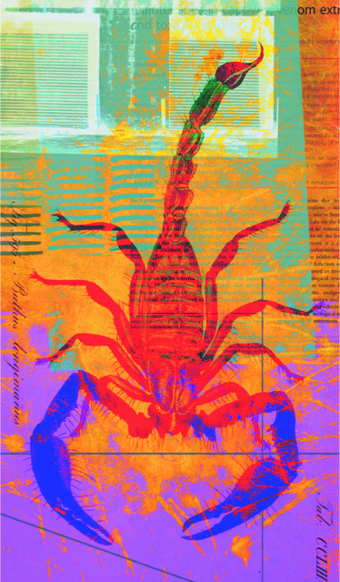 red, purple, blue and green artwork with scorpion in the background