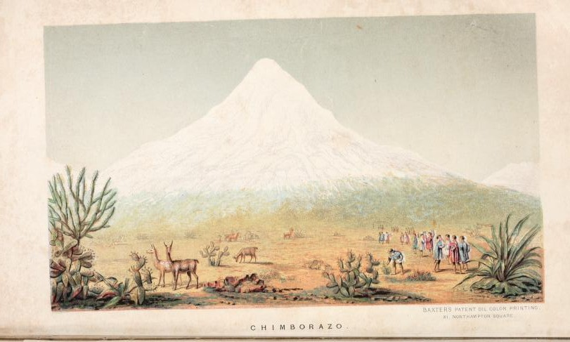 A snow-covered mountain in the distance, with a desert type scene with deer and people in the foreground.