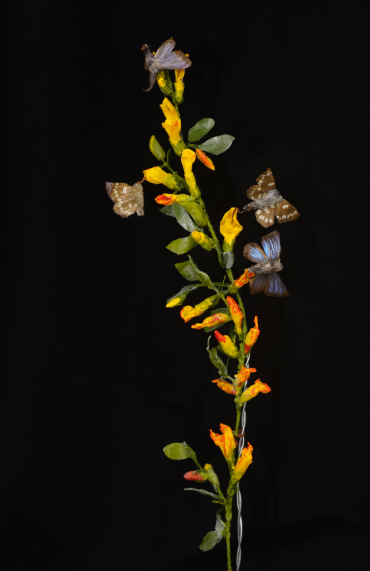 model of butterflies on a plant