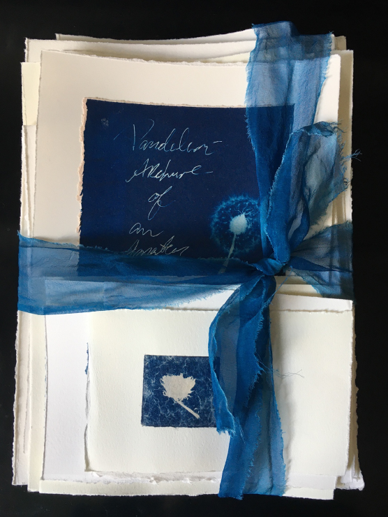 papers bound in blue ribbon