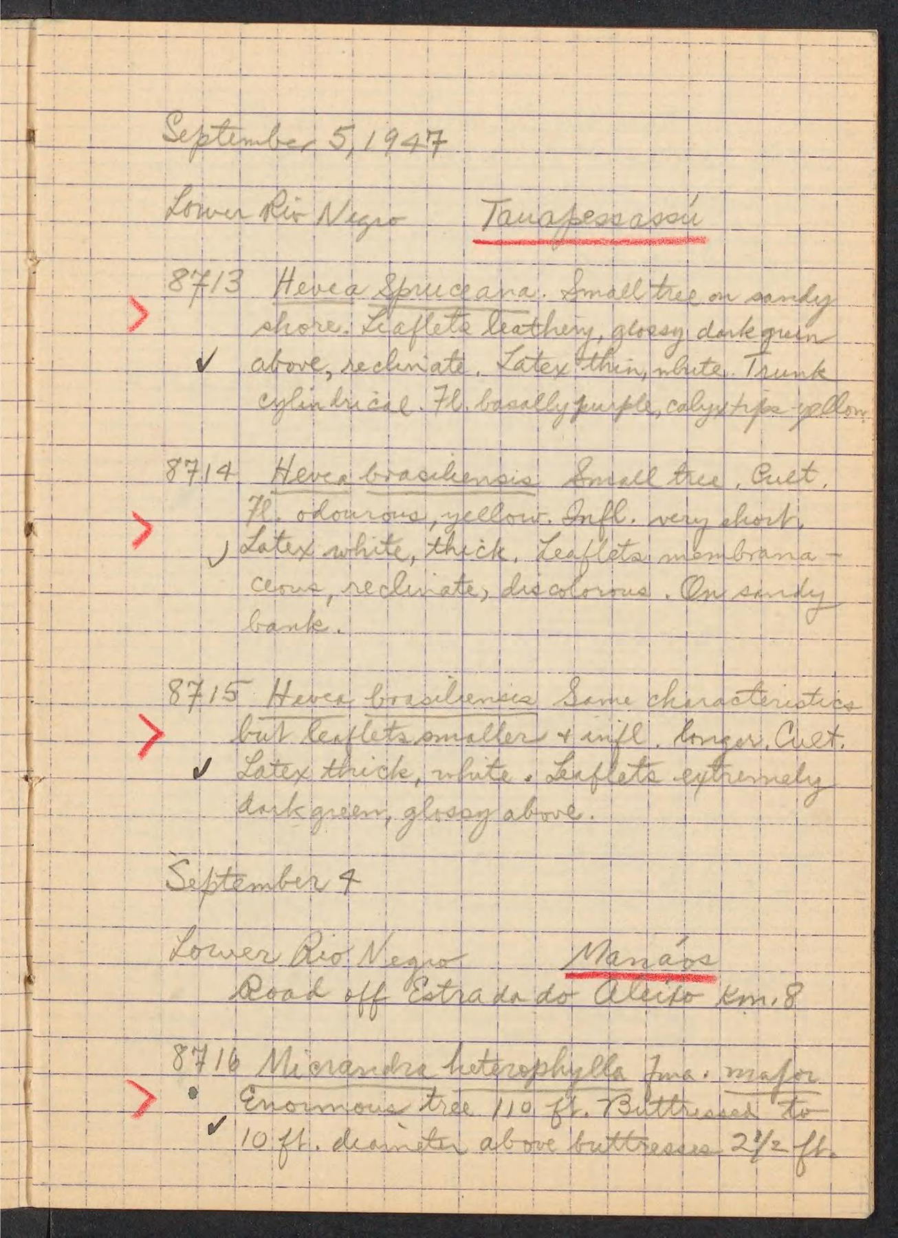 page from a handwritten notebook