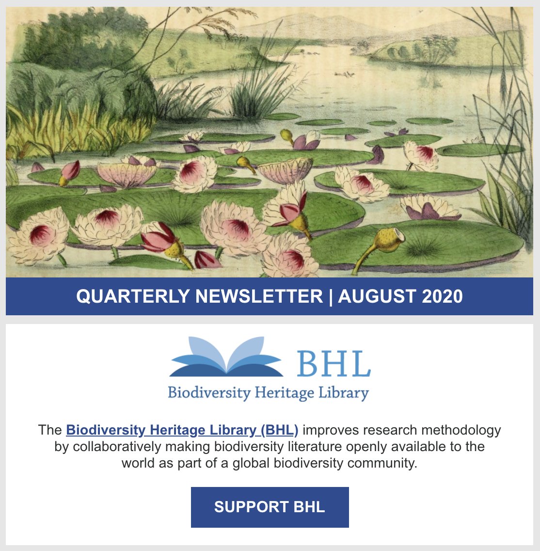Screenshot of the August 2020 BHL quarterly newsletter