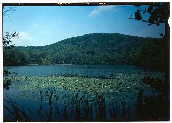 View of the pogue, looking west and illustrating the relation of this mountain pond to the surrounding forest slopes of the Mt. Tom Forest. Marsh-Billings-Rockefeller National Historical Park, boyhood home of George Perkins Marsh. Historic American Landscape Survey, Library of Congress Prints & Photographs Division. image link: https://cdn.loc.gov/service/pnp/habshaer/vt/vt0100/vt0131/color/218497cv.jpg Record link: https://www.loc.gov/item/vt0131/