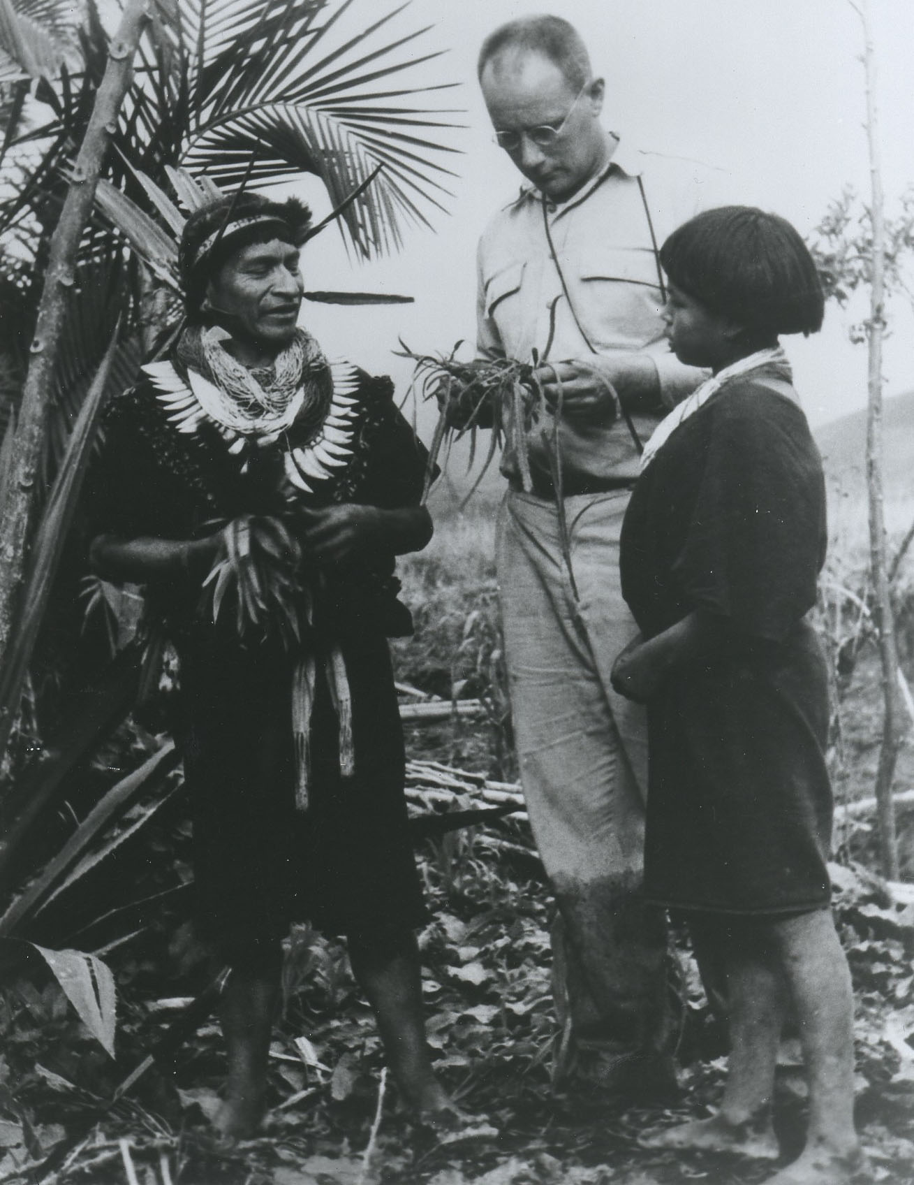 black and white photo of three people standing in a forest looking at plant specimens