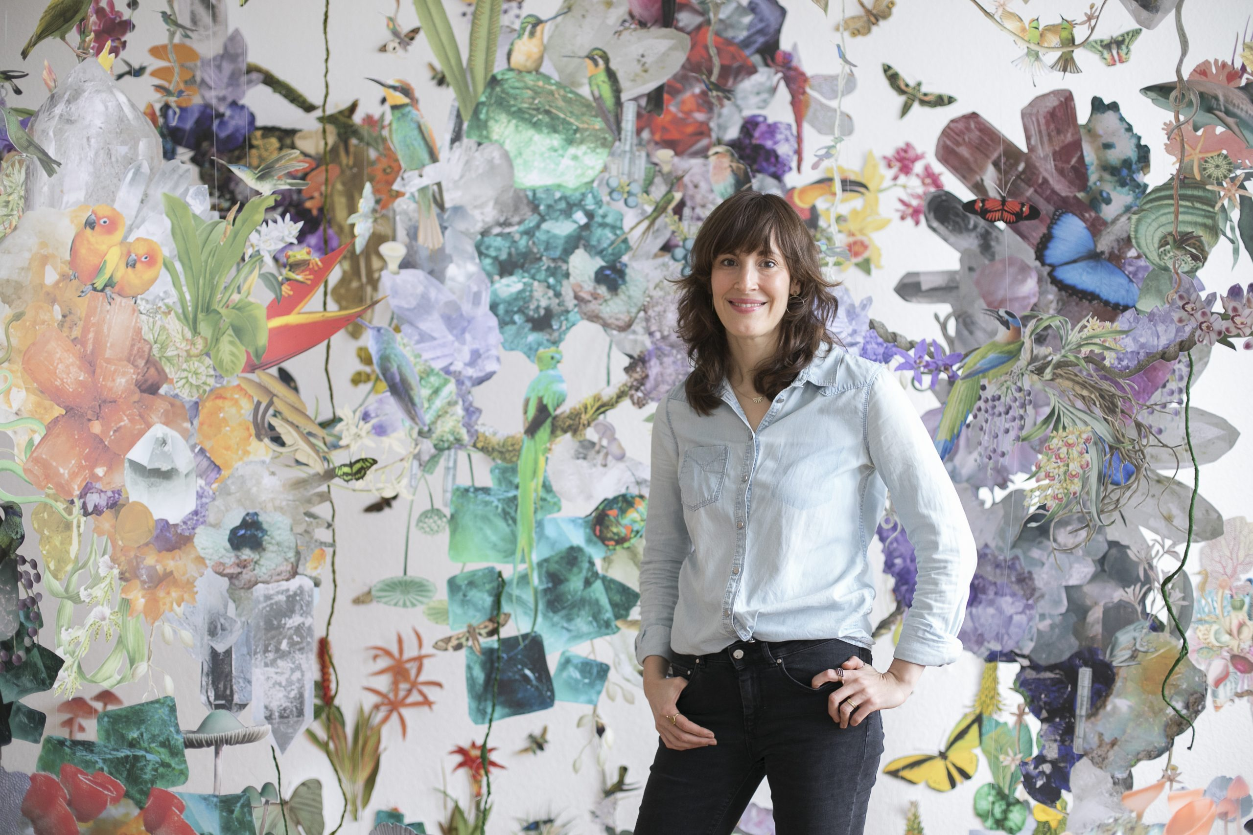collage installation art featuring various biodiversity figures