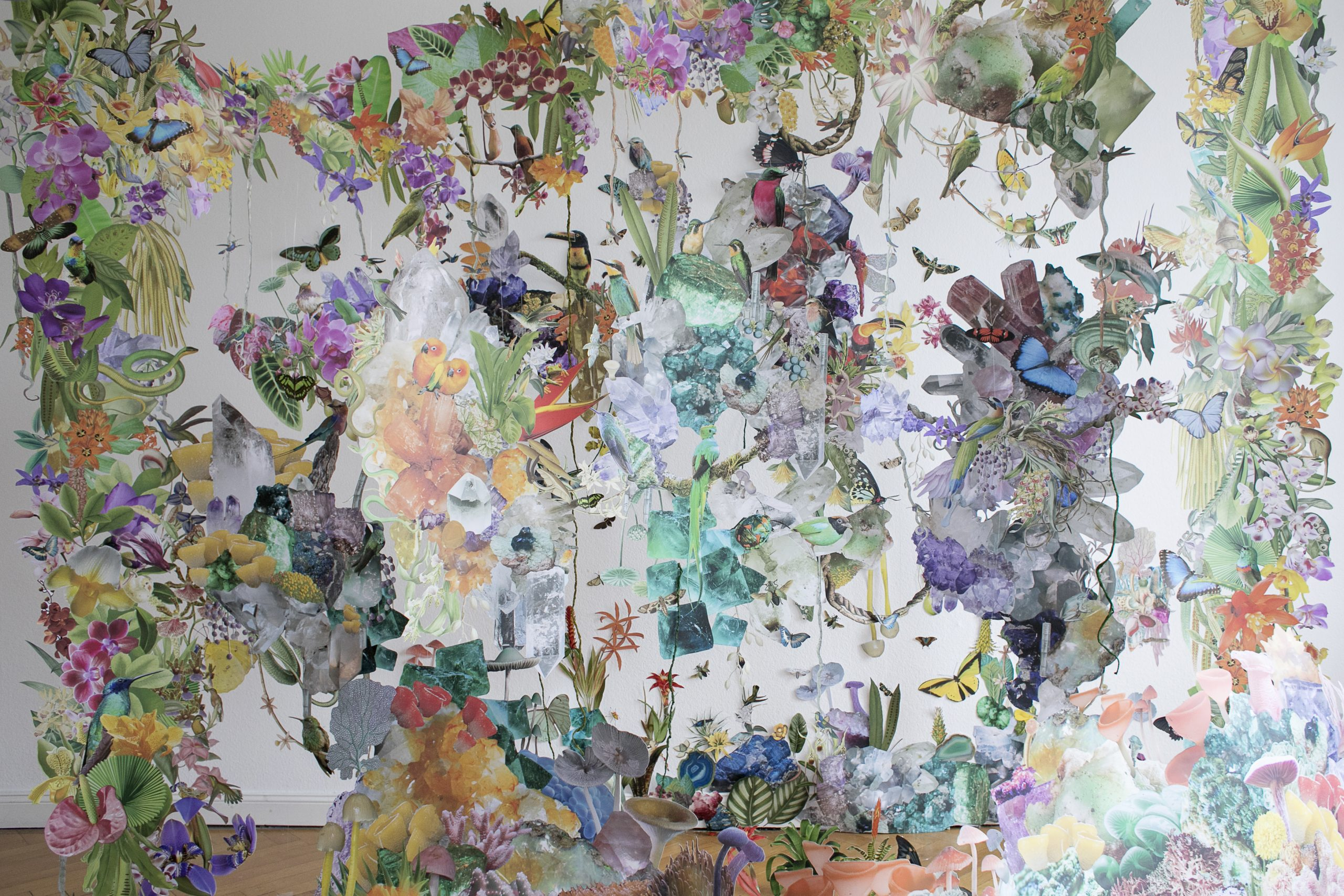 Collage installation art with various biodiversity figures.