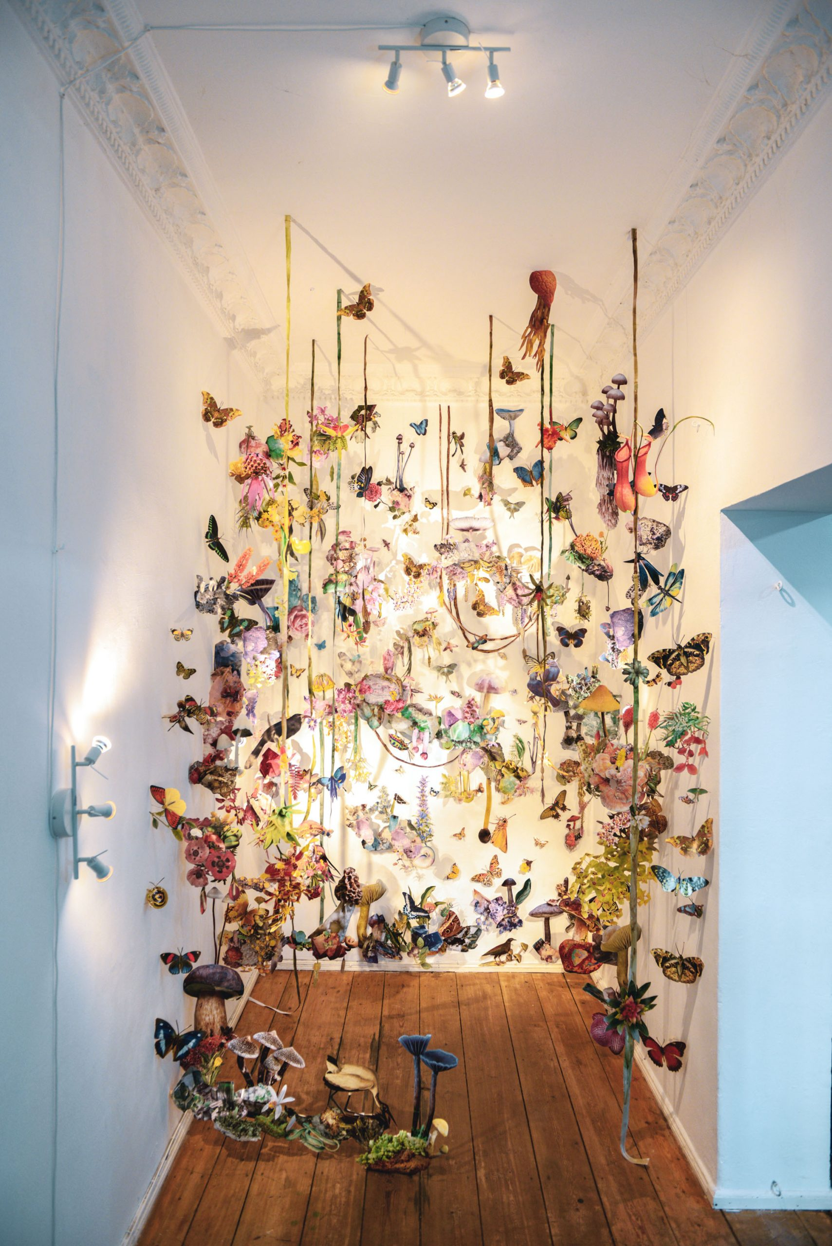 collage installation art featuring various biodiversity figures