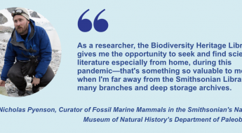 """""""As a researcher, the Biodiversity Heritage Library gives me the opportunity to seek and find scientific literature especially from home, during this pandemic—that's something so valuable to me, when I'm far away from the Smithsonian Libraries' many branches and deep storage archives."""" Dr. Nicholas Pyenson, Curator of Fossil Marine Mammals in the Smithsonian's National Museum of Natural History's Department of Paleobiology"""