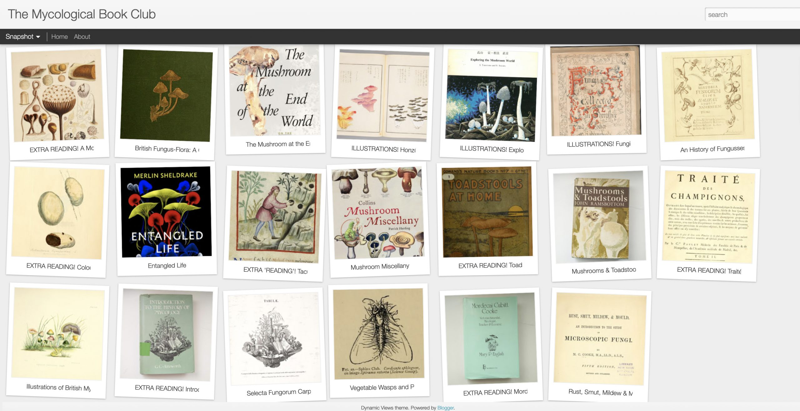 Screenshot of a virtual bookshelf with thumbnails of book covers.