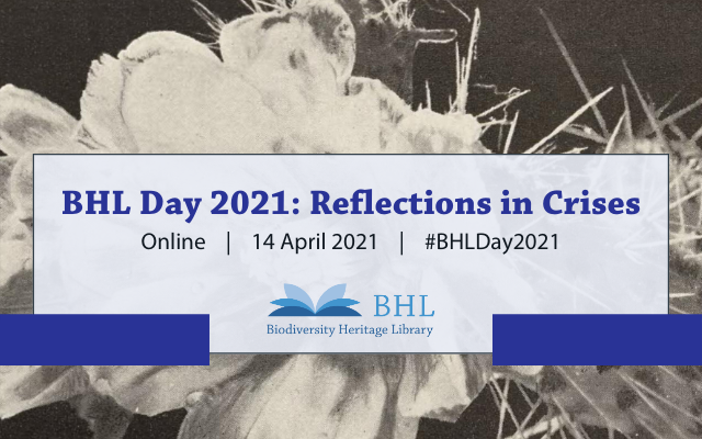 BHL Day 2021: Reflections in Crises