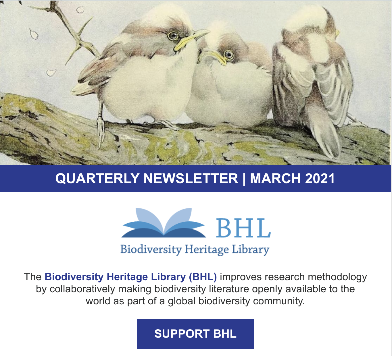 Screenshot of the March 2021 BHL newsletter