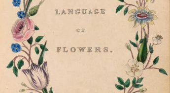 "Book title page with title"" The Language of Flowers"" encircled in a wreath of flowers."