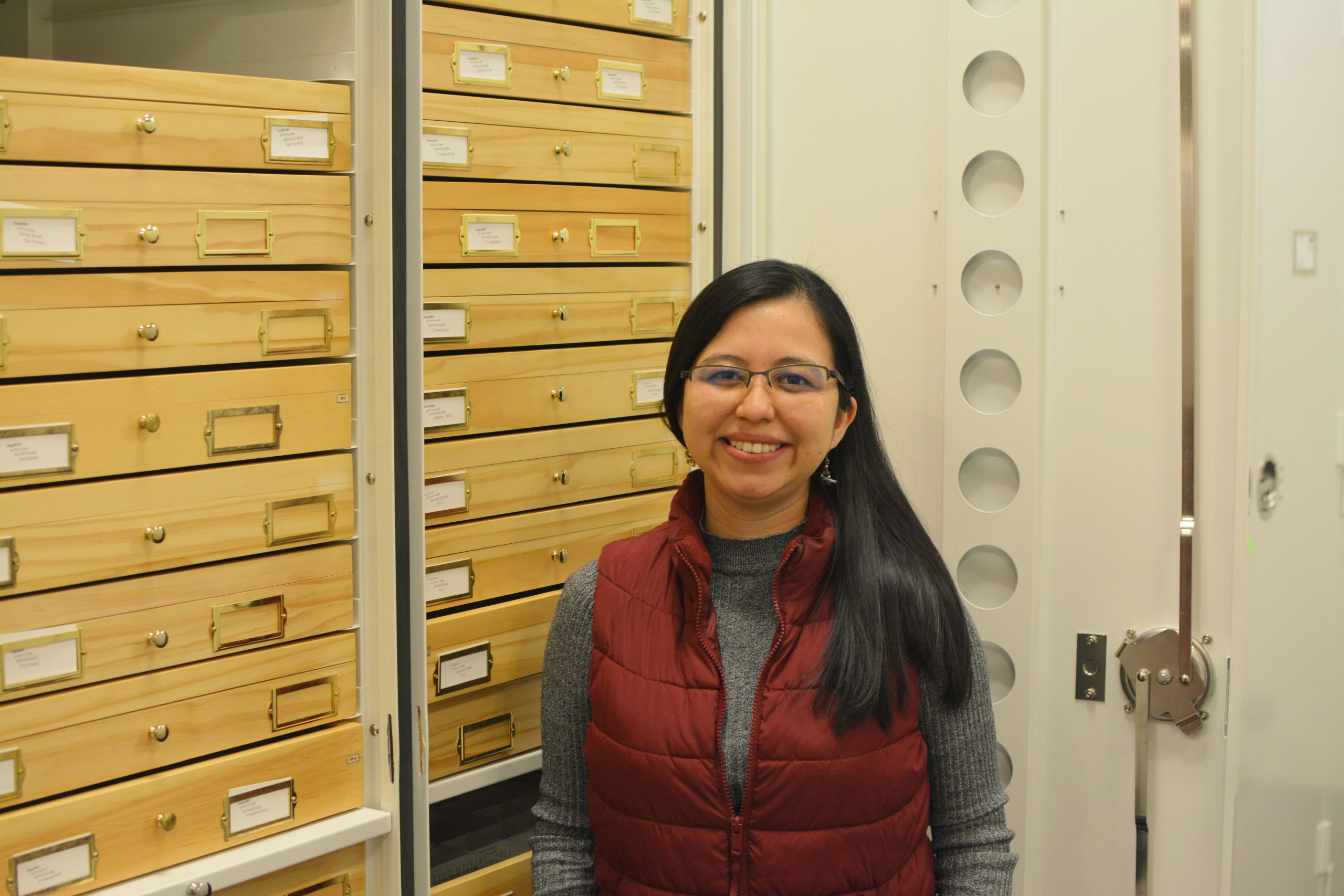 A person with dark hair in a red vest and gray shirt standing in front of collection specimen drawers.