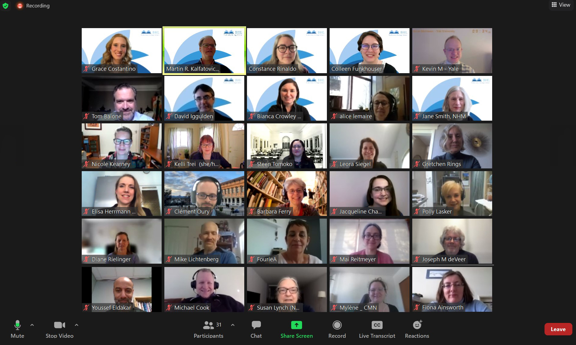 Screenshot of a Zoom meeting interface with a gallery view of people's heads