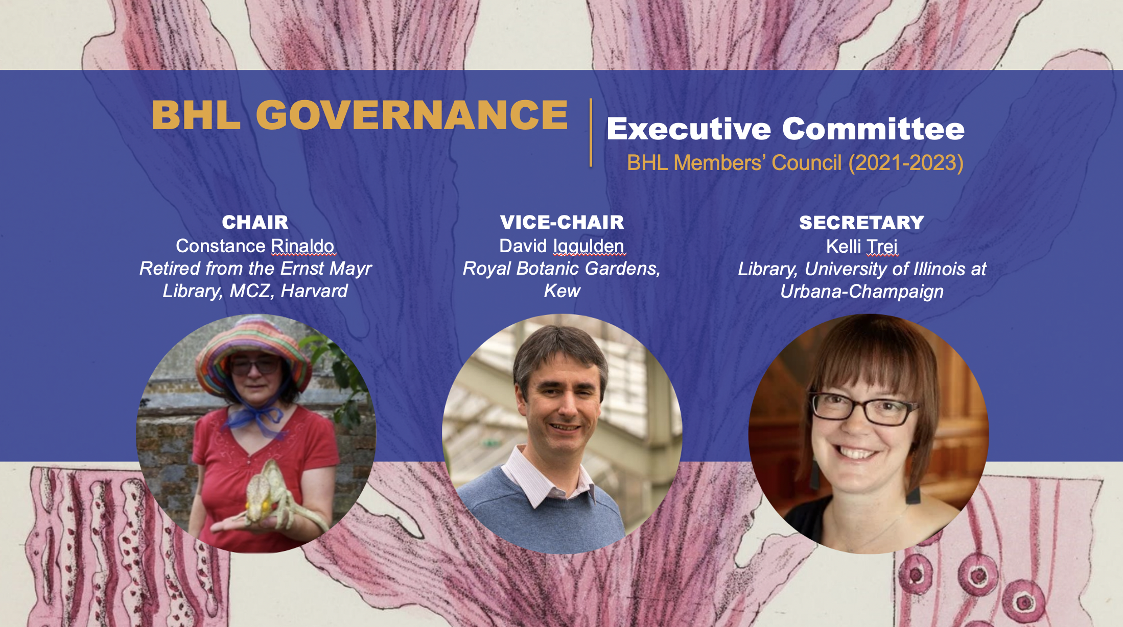 """Graphic with photos of two women and a man and the text """"BHL Governance: Executive Committee"""""""