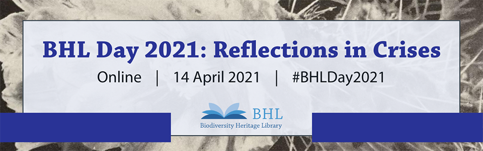 BHL Day 2021 graphic