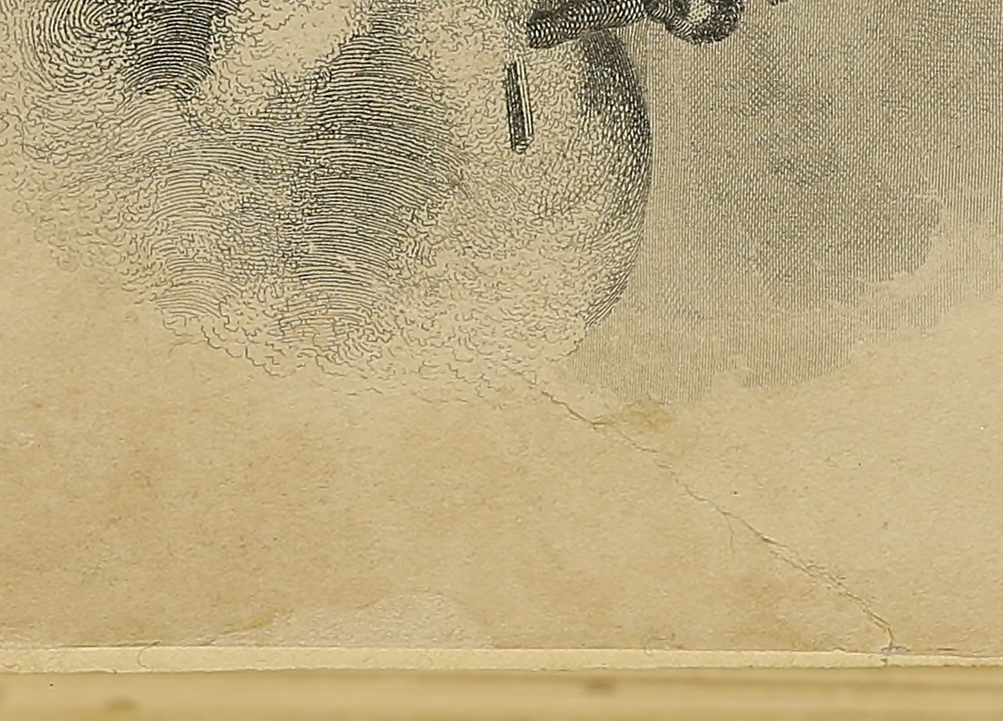 Close-up of a repair made on a page in a book.