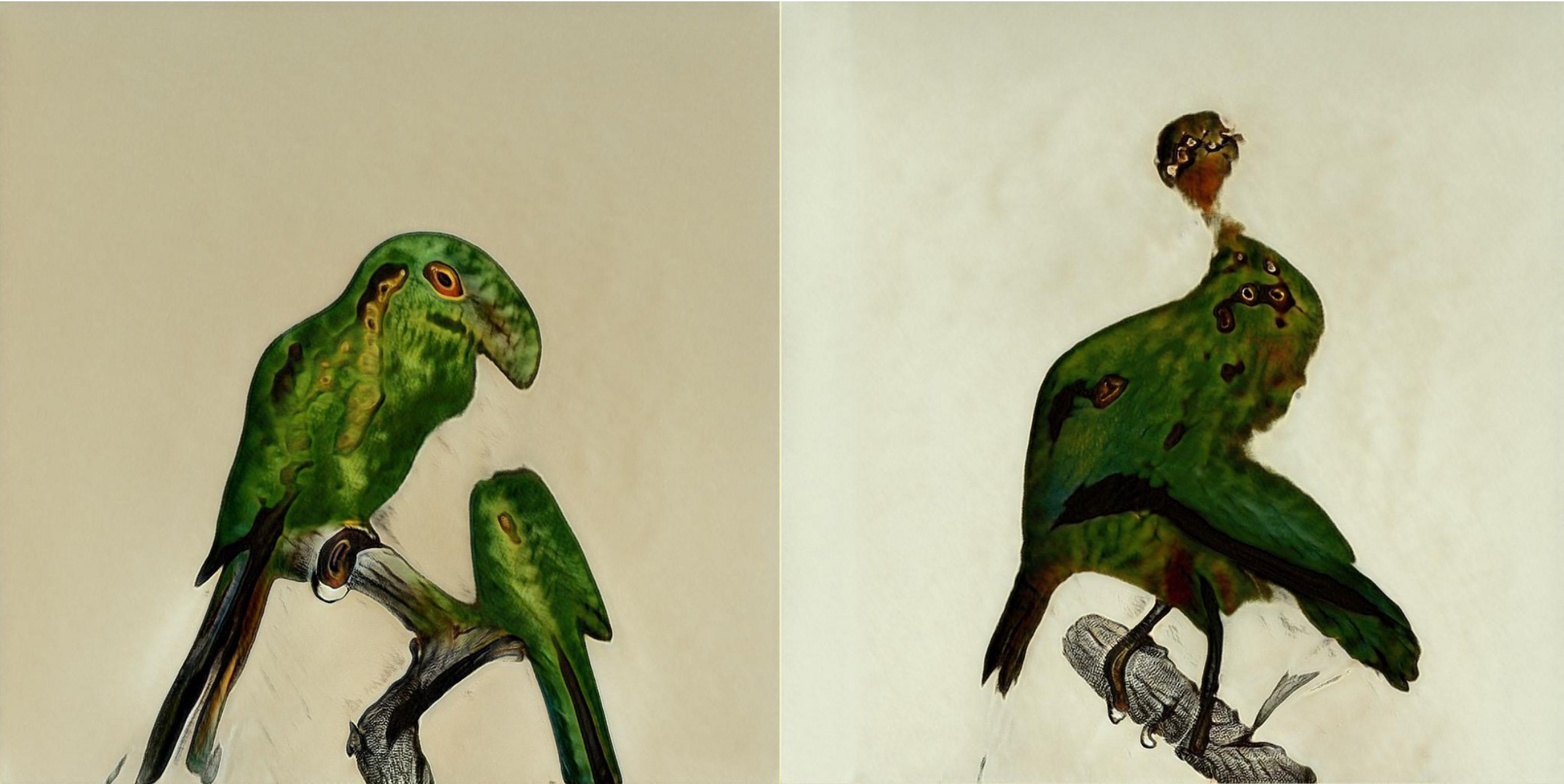 Two screenshots of images the StyleGAN has produced where the birds look a weird shape almost like they're melting. The legs and tree branches and textures of the birds look okay, but they have many eyes and their shape is all wrong.