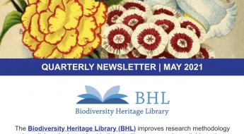 Screenshot of the May 2021 BHL qaurterly newsletter