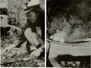 In two separate images, an Asian woman kneels with a large knife to collect medicinal plants; medicinal herbs are steamed with eggs to create a steam bath